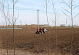 3月开始,农村种粮补贴可以申报,每亩补贴100元以上